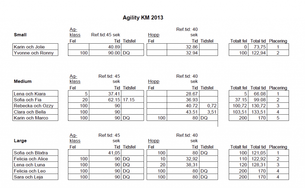 agility_KM_2013