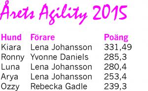 agility_2015