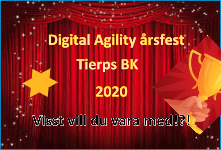 Digital Agility årsfest
